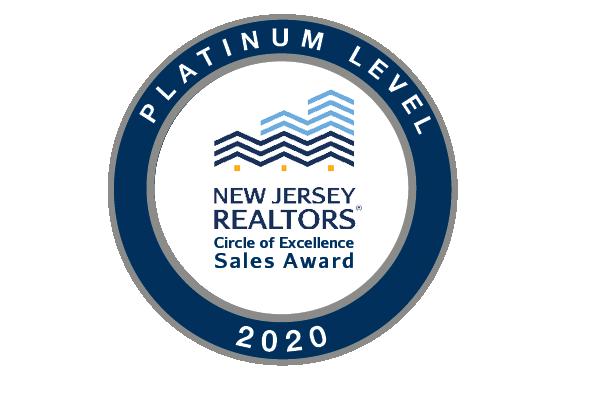 2020 Platinum Logo
